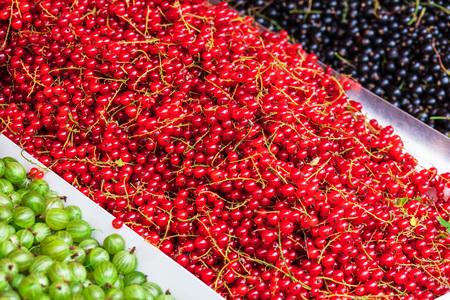赤と黒スグリ、グースベリー市場で