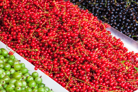 red and black currants, gooseberry in the market