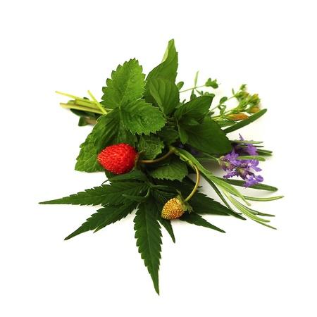 hanf: Blumenstrau� aus Kr�utern