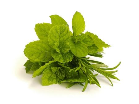 medicina natural: hierbas Foto de archivo