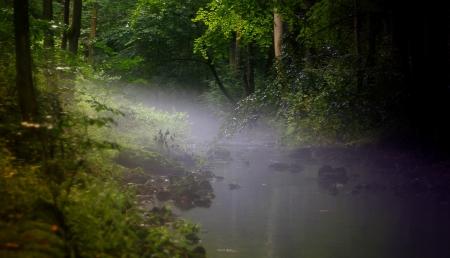 fog over the river Imagens - 17241545