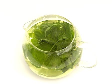 lemon balm tea on a white background photo
