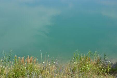 Stil: Lake shore with plants