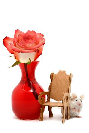 Adorable white and tan pet mouse hiding behind a miniature chair with a red rose in a vase.