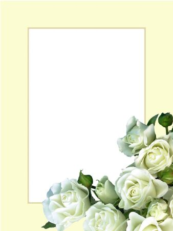 wedding photo frame: White roses on ivory frame Stock Photo