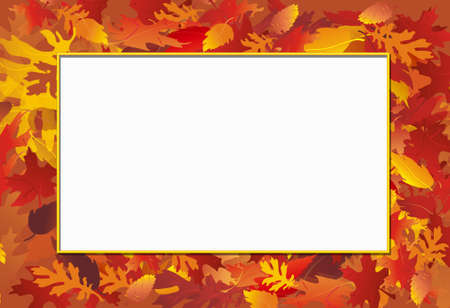 Fall leaf background with white note overlay for message Stock Photo