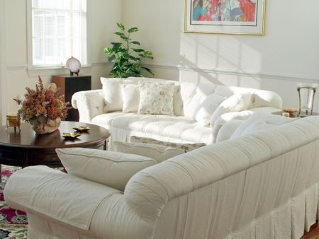 Interior decor and furnishings of modern living room with sunlight drawing attention to sofa.