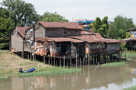 plantas acuaticas: Pathumthani, Tailandia - 04 de junio 2014: Un hombre de la localidad no identificada recoge las plantas de agua para la venta frente a su casa grande y vieja por Rangsit Canal 4 de junio de 2014 en Pathumthani, Tailandia.