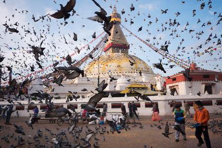 stupa one: KATHMANDU, NEPAL - FEBRUARY 19, 2015: Pigeons fly all over Boudhanath Stupa on February 19,2015 in Kathmandu, Nepal.Boudhanath is one of the largest ancient buddhist stupa in the world. Editorial