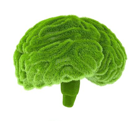 business environment: The human brain is covered with green grass. The metaphor of the wild, natural or imperfect intelligence in the design of information related to eco