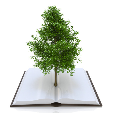 crecimiento planta: Tree growing from an open book, alternative recycling concept in the design of access to information relating to the nature and form of education