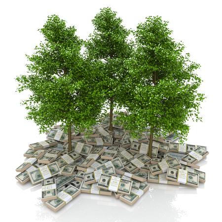 お金の大きい山で。白い背景とツリー上のドル。ビジネスと金融に関連する情報のデザインでは、財政 写真素材