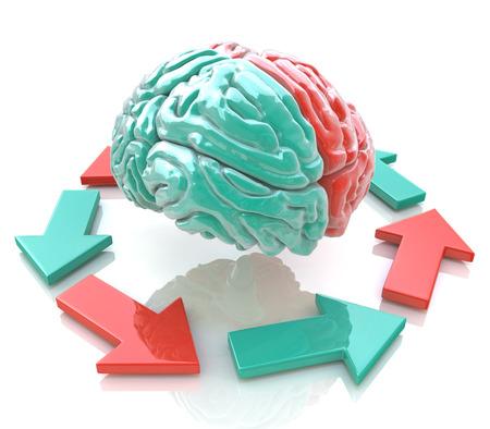 Linker hersenen, rechter hersenen. Concept. Menselijke hersenhelften in het ontwerp van informatie in verband met het werk van de hersenen