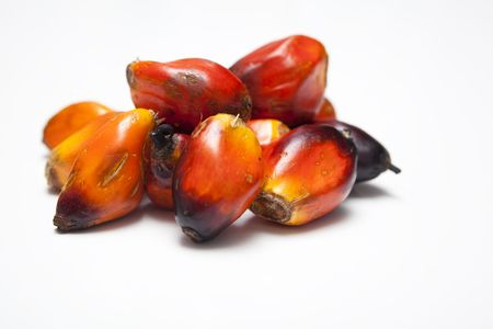 Oil Palm: A small bunch of Palm Oil Seeds Stock Photo