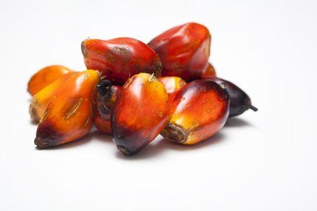 red palm oil: Un mazzetto di Palm Oil Seeds  Archivio Fotografico