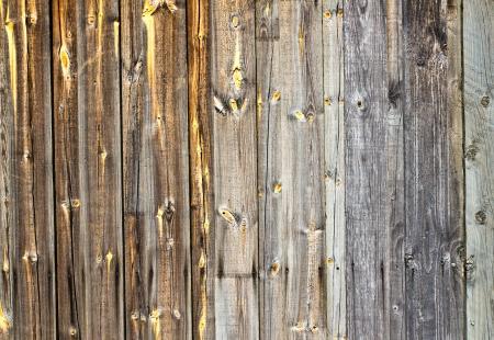 wooden texture Stock Photo - 13797216