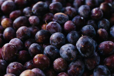 Macro Photo food fruit plums. Texture background of fresh blue plums. Image fruit product blue plums Stok Fotoğraf
