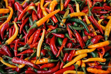 a colorful mix of the freshest and hottest chili peppers. Background