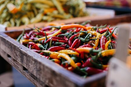 a colorful mix of the freshest and hottest chili peppers. Market place