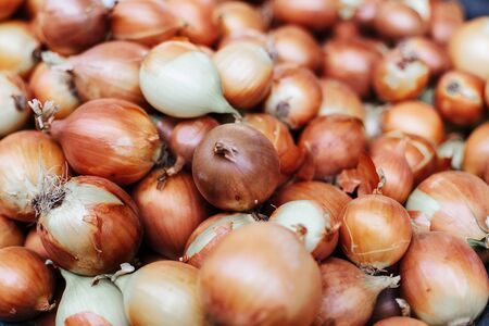 Fresh onions. Onions background. Ripe onions. Onions in market. Organic farmer food Stock Photo