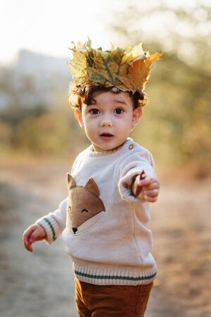 Portrait liitle boy with crown of leaves in autumn park. Cute curly toddler