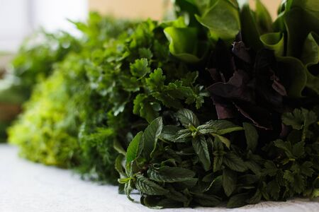 Closeup of fresh herbs. Parsley and dill, spinach, salad Stok Fotoğraf - 145312867