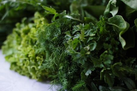 Closeup of fresh herbs. Parsley and dill, spinach, salad