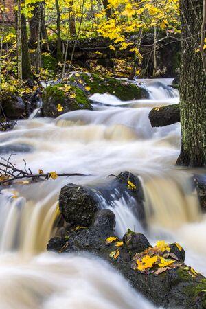 rapids: Rapids in the fall