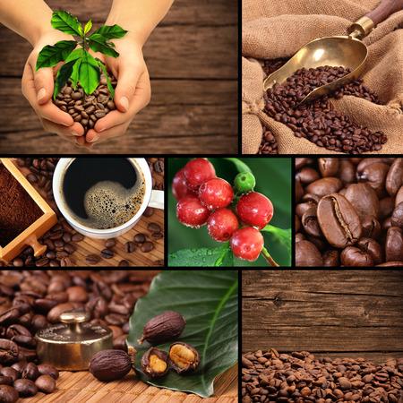 Coffee collage Stock fotó