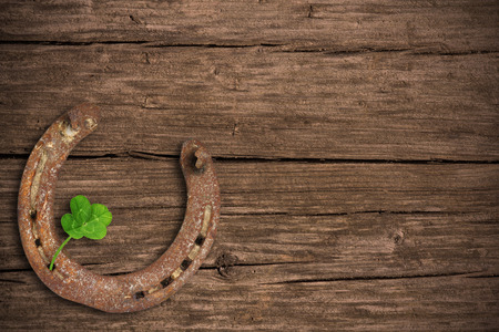lucky clover: Blackboard with four-leaved clover and a horse shoe