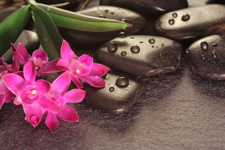 Hot stones with orchid on slate 免版税图像 - 25720455
