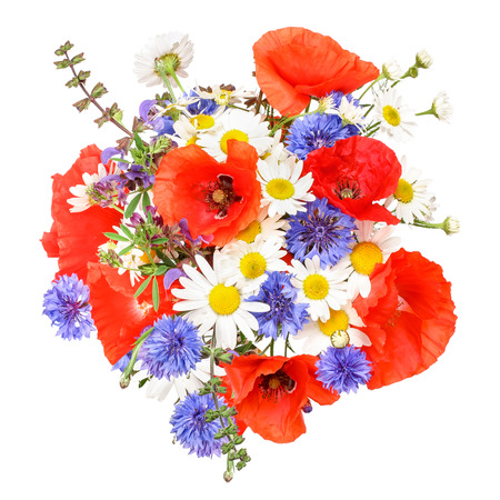 Colorful meadow flowers 免版税图像