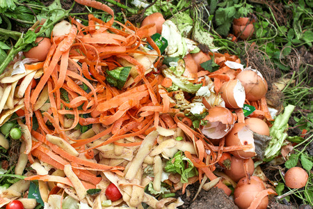 basura organica: Bio-residuos para compost Foto de archivo
