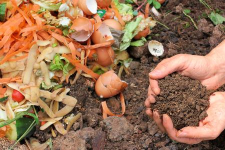 basura organica: Compost con la tierra en abono Foto de archivo