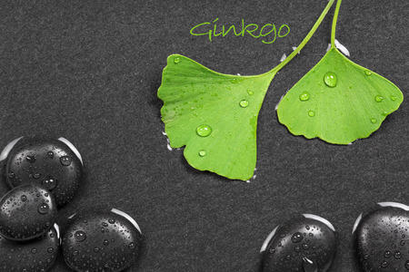 Ginkgo leafs and hot stones photo