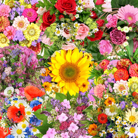 sun flower: Background with flower bouquets