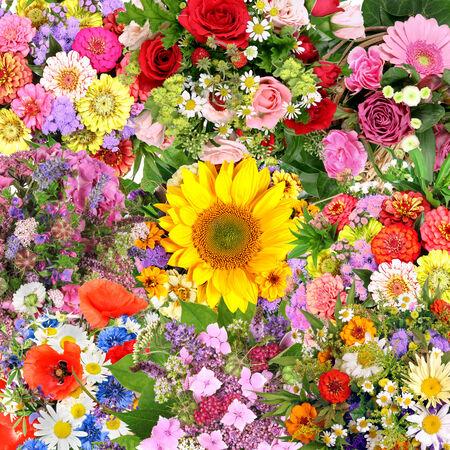 caes: Fondo con ramos de flores Foto de archivo