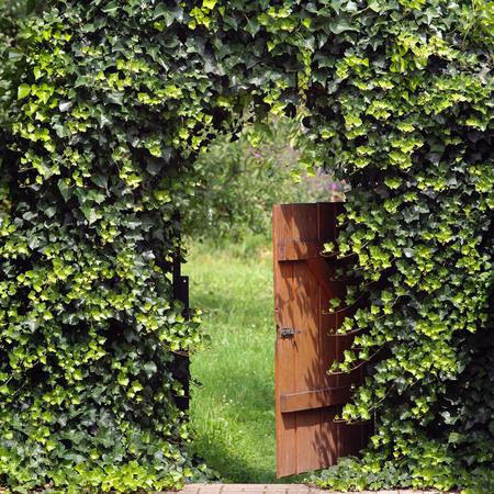 담쟁이 아치 밑의 통로가있는 열린 정원 문