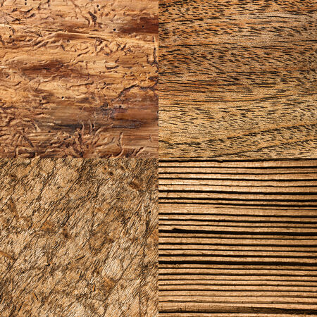 muster: Various wood backgrounds