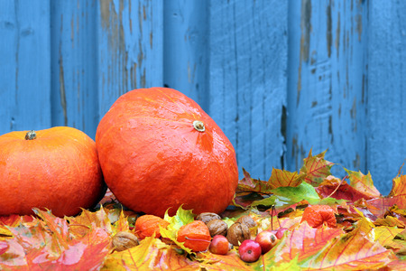 Autumn background with pumpkins, and leavesl photo