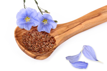 flax seed oil: Linum blossoms, flaxseed Stock Photo