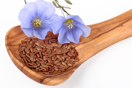 flax seed oil: Linum blossoms, flaxseed on wooden spoon