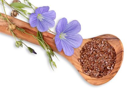 青いアマ、亜麻の花の種子 写真素材