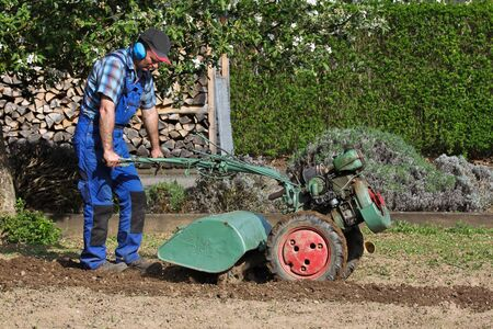 Cultivator, working in the garden photo
