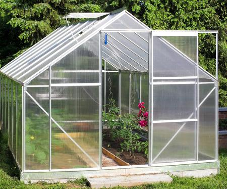 Invernadero con plantas de tomate Foto de archivo