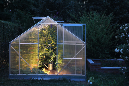 in the greenhouse: Greenhouse in the evening Stock Photo