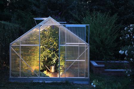invernadero: Invernadero en la noche