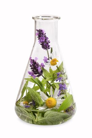 laboratorio: Erlenmeyer con hierbas frescas M�dico