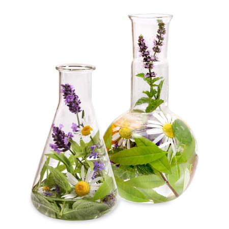 botanical medicine: Flasks with medicinal herbs