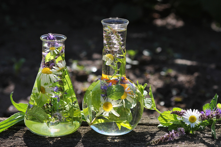Healthy with Homeopathy